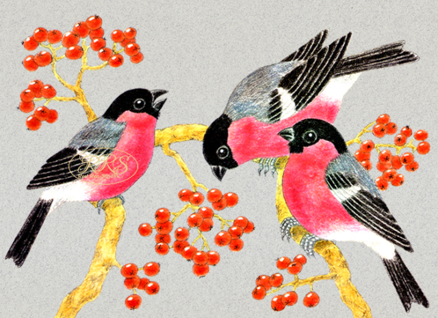 Card with bullfinches