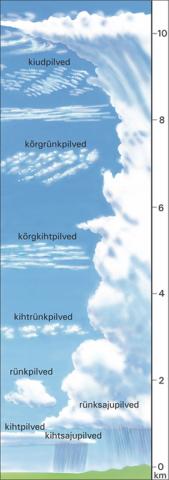 Pilvede tüübid