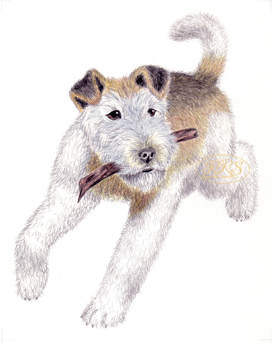 L. Tungal 'Dog Knows Dog' illustration