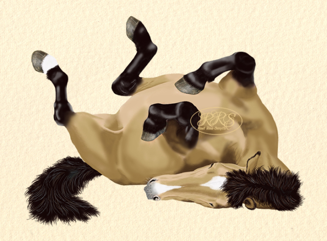 Wallowing horse