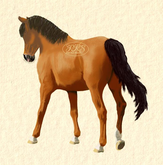 Sammuv hobune
