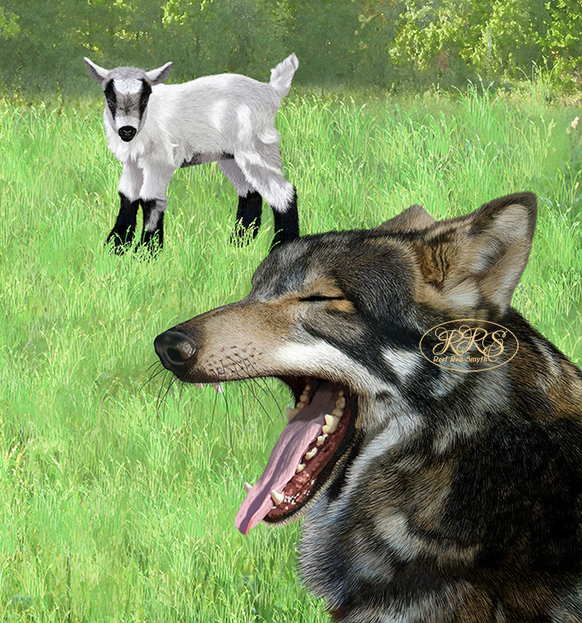 Goat kid with wolf