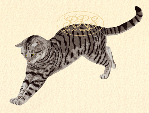 Kirju kass hüppel
