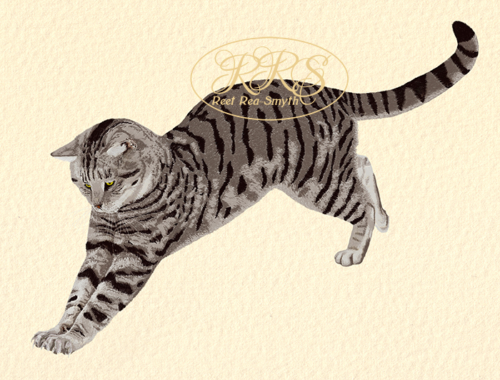 Stripy cat jumping