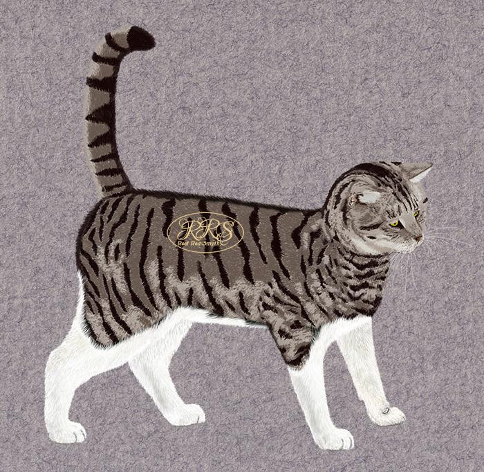 Seisev kass