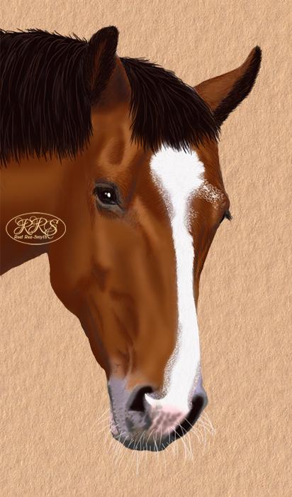 Horse Lamoore