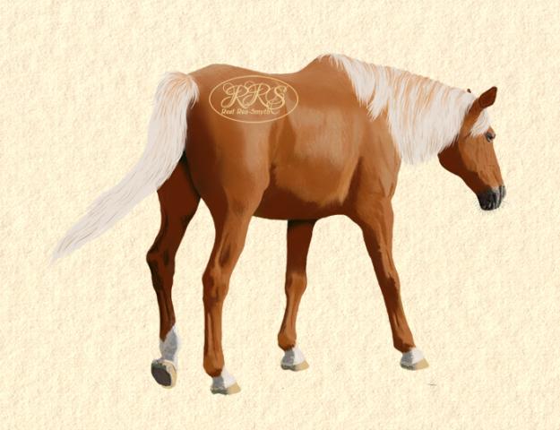 Horse Lumilee