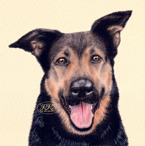 Mongrel Tuki's portrait