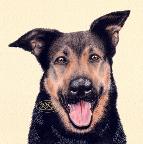 Krants Tuki portree